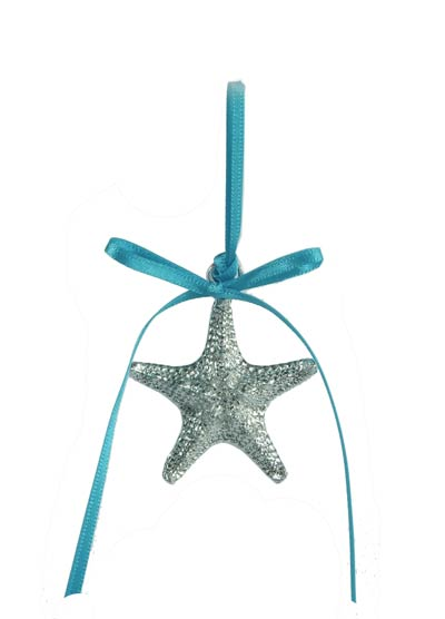 Star-turquoise-web